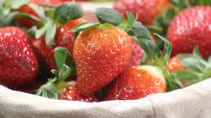 Erdbeeren auf der Internationalen Grünen Woche