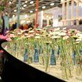 Blumenhalle Grüne Woche Berlin